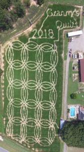 carlton farm