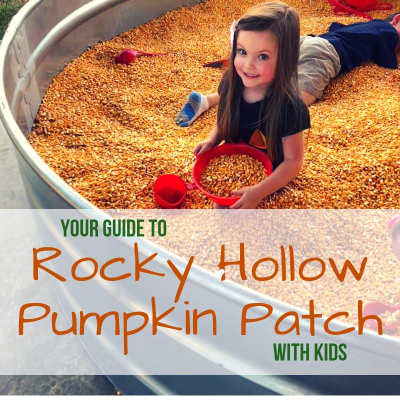 Rocky Hollow Pumpkin Patch (1)